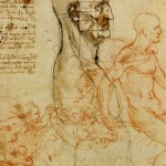 Da-Vinci-Drawings-Wallpapers-8