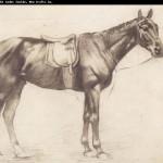 Edgar Degas-873352