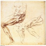 Michelangelo-Buonarroti-Studies-of-Two-Male-Torsi-and-a-Right-Leg-2-