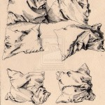 Pillow_Study__Albrecht_Durer_by_Red_EyedDemon