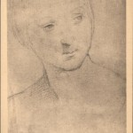 Drawing of the Virgin by Raffaello Sanzio