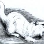 courbet cat
