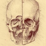 da_vinci_drawing_study_by_bryanzavestoski-d4lc5cb