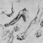 study-of-male-hands-and-arms