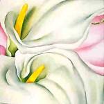 GeorgiaOKeeffe-Two-Calla-Lilies-on-Pink-1928