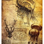 14376168-ancient-anatomical-drawings-made-by-leonardo-davinci-a-study-of-the-human-brain-and-nervous-system