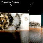 %e5%8e%9f%e5%88%9d%e7%81%ab%e7%90%83%e4%b8%80project-for-projects